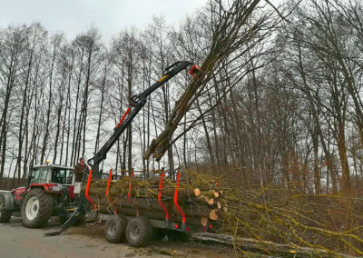 Abtransport mit Forstkrananhänger